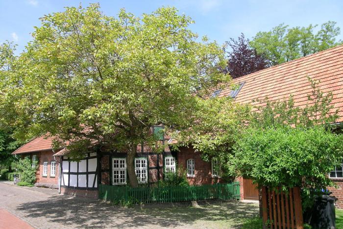 Buschhaus in Wiedensahl