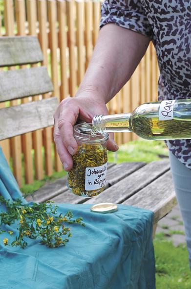 Rapsöl auf Johanniskrautblueten